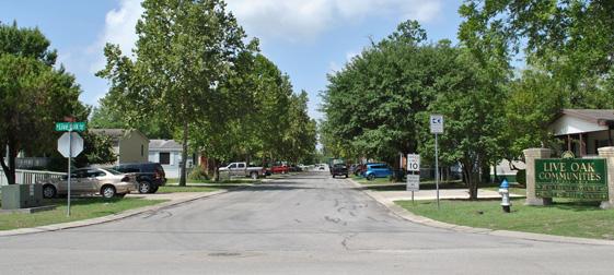 Live Oaks - Entrance